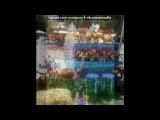 «летняя лужайка» под музыку Классика для малышей - Menuet. Picrolla